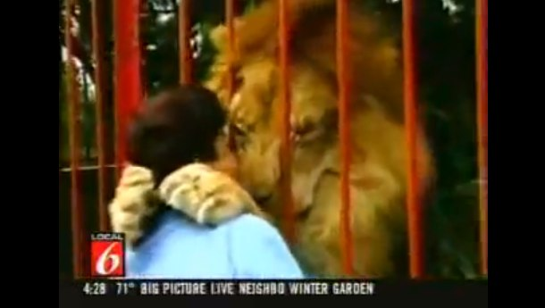 Woman Lion Injured Forest Columbia - YouTube-2